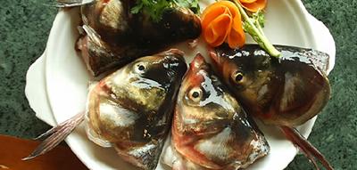 譚魚頭火鍋