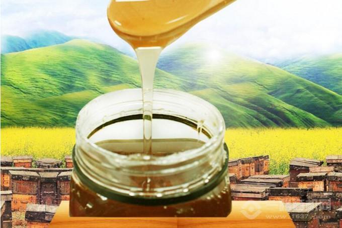 譚氏蜂蜜天然好品質