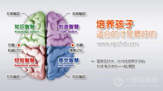 全脑智慧岛加盟