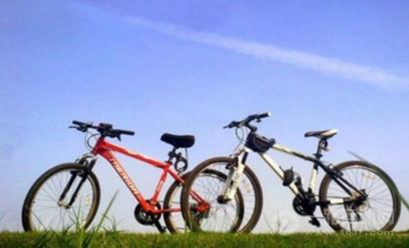 奥力玛智能自行车