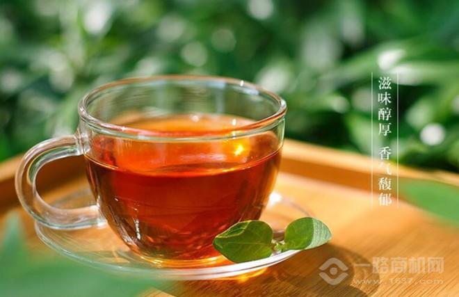 狮井茶叶加盟
