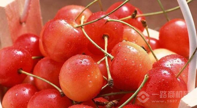 果多美水果超市