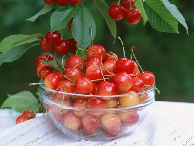 花果山水果加盟