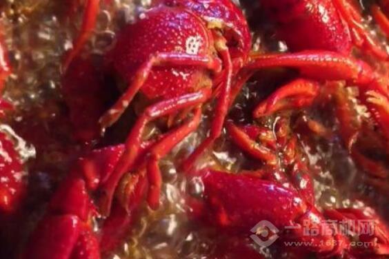 热辣生活小龙虾加盟