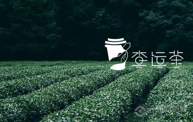 查運茶加盟