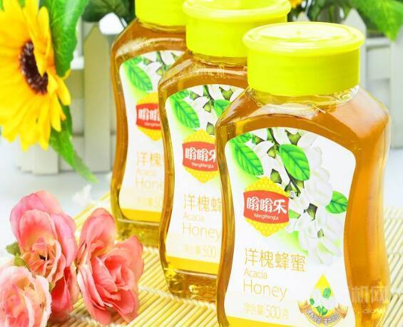 嗡嗡樂蜂蜜