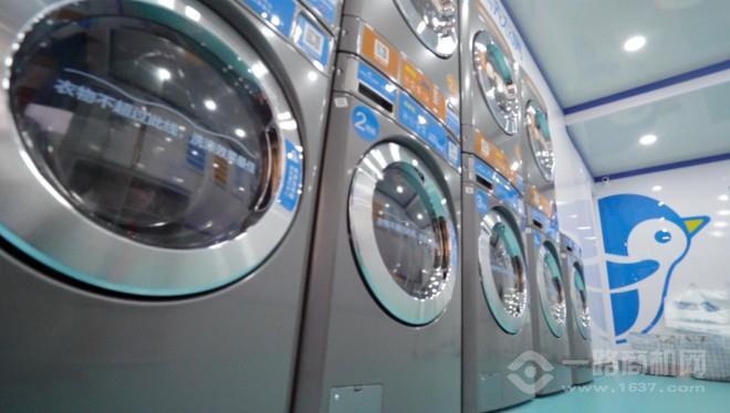 企鹅共享洗衣机加盟