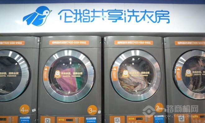 企鹅共享洗衣机
