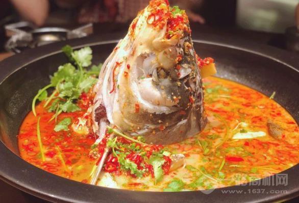 黄晓猫剁椒大鱼头加盟