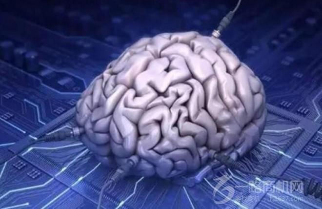 大腦時代教育加盟